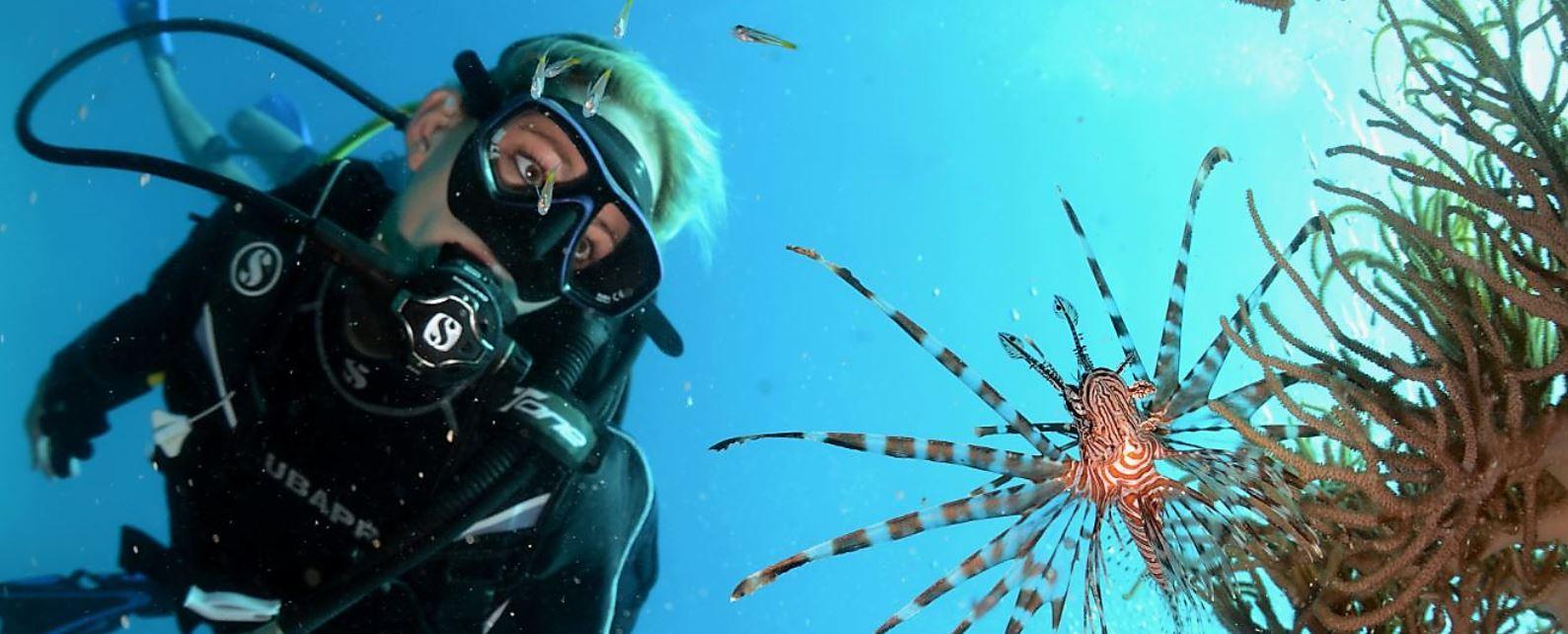 4 day liveaboard scuba dive tour