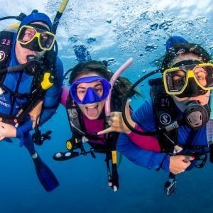 Budget Great Barrier Reef Cruise Resort Divers