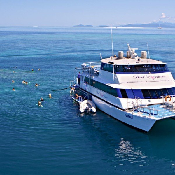 Reef Experience , Great Barrier Reef, Australia